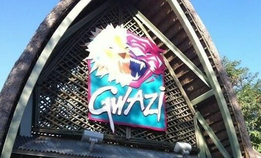 Busch Gardens Set To Close Gwazi… Forever