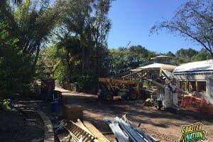 World of Avatar at Walt Disney World – Construction Update