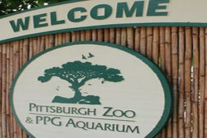 Pittsburgh Zoo Offering Drive-Through COVID-19 Testing In Parking Lot