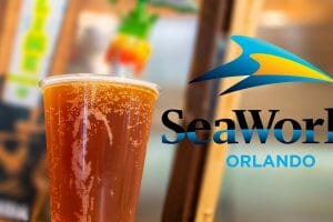 Free Beer Is Back At SeaWorld Orlando