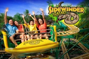 New Sidewinder Safari Coaster Slithers Into Six Flags Discovery Kingdom in 2020