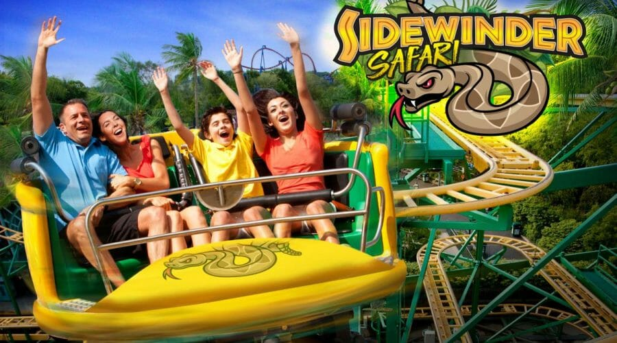 Six Flags Sidewinder Safari Coaster Update