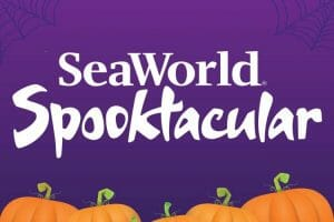 SeaWorld Orlando's Halloween Spooktacular Returns With New Maze, Trick Or Treating And More