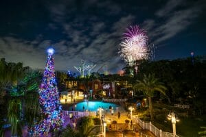 Busch Gardens Tampa Offers Two Exciting Options To Celebrate New Year's Eve With Physically Distant Fireworks