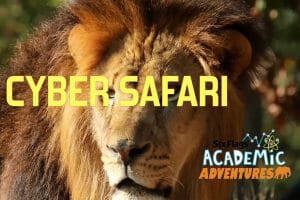 New Cyber Safari Coming To Six Flags Great Adventure