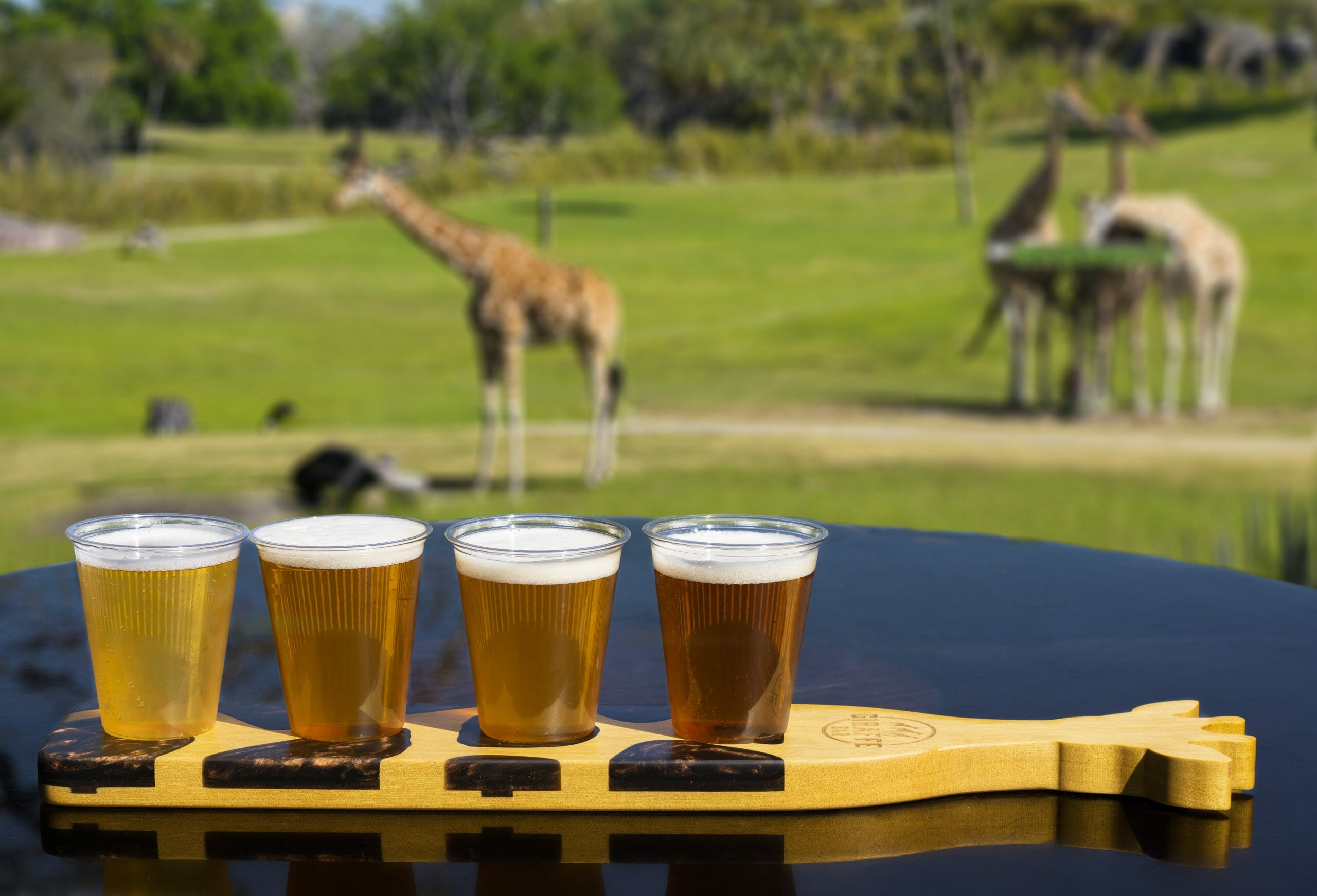 Busch Gardens Tampa To Open New Giraffe Bar